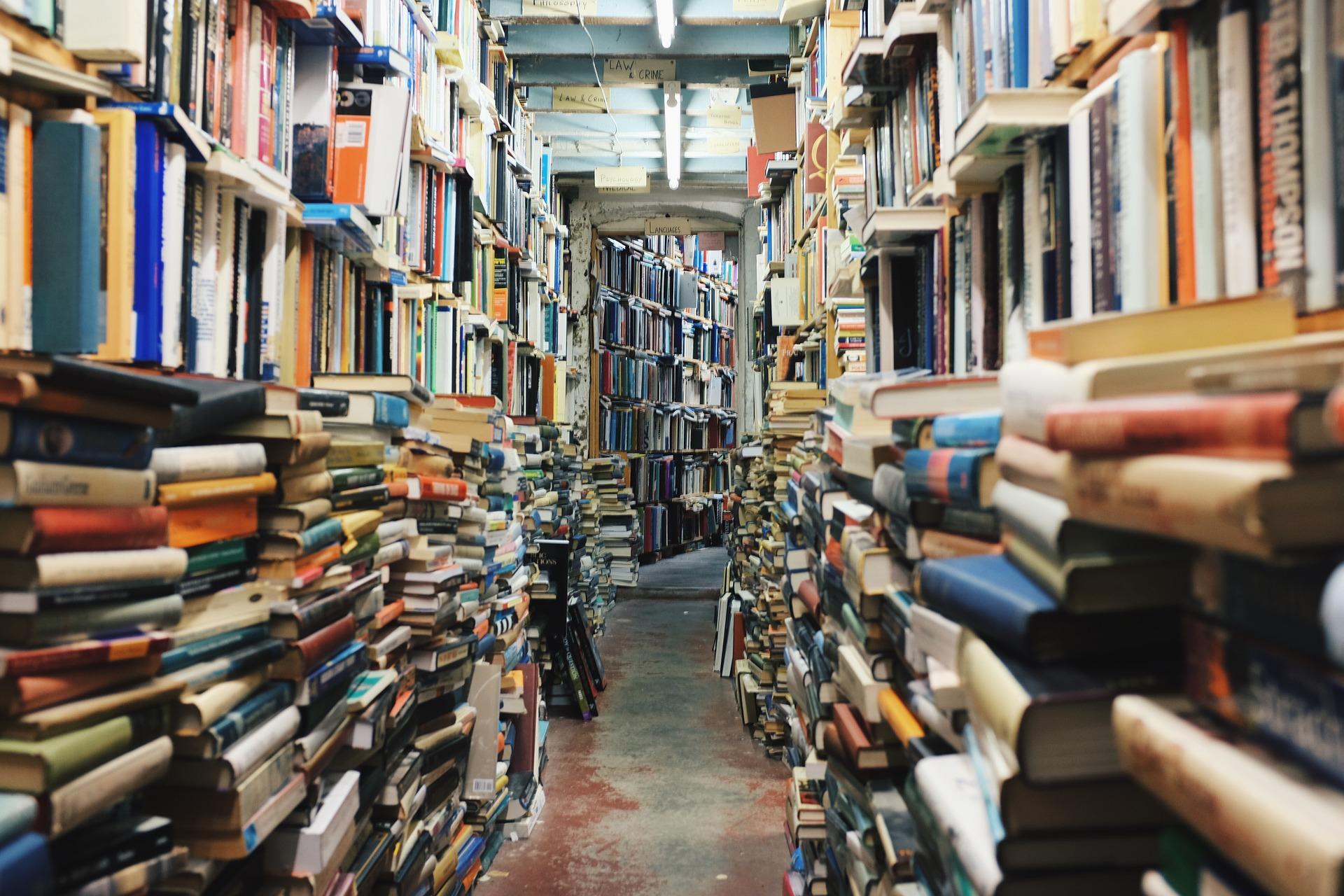 Bücherflohmarkt in Plauen